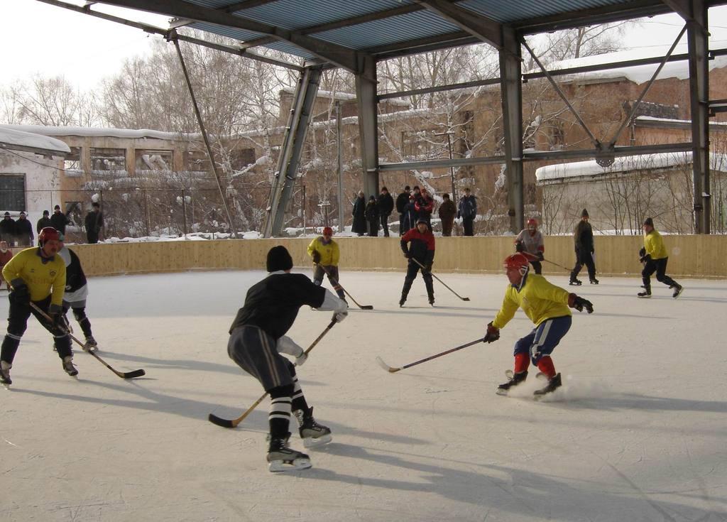 Хоккейная коробка своими руками фото